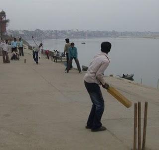 rural_cricket