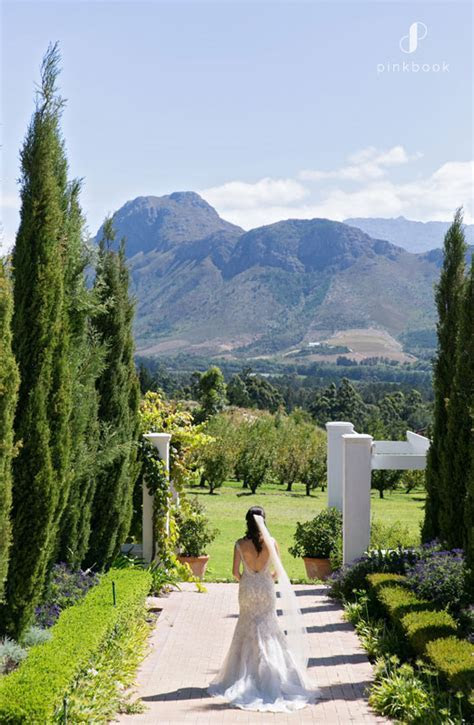 How Much Does a Wedding Cost in South Africa?   Pink Book