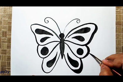 40+ Most Popular Cute Butterfly Drawing Easy