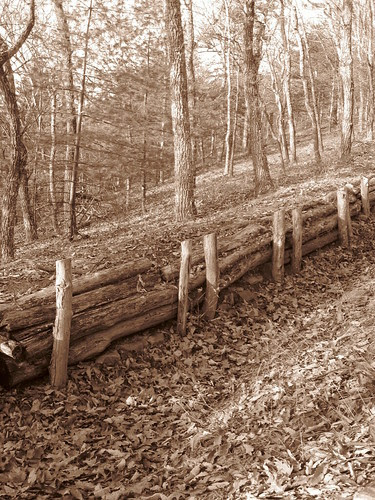 Reconstructed Breastworks