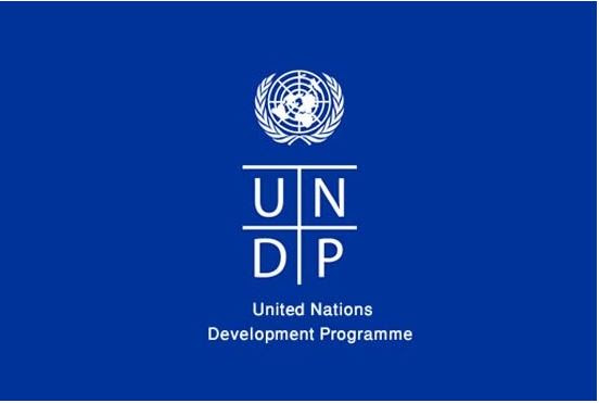 Program Coordinator, Gender and Humanitarian at UNDP Nigeria
