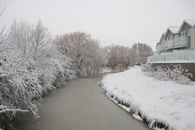 snow in rye DSC_3262_1