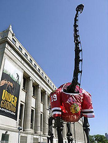 Field Museum Dinosaur jersey