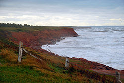 http://upload.wikimedia.org/wikipedia/commons/thumb/e/eb/Prince_edward_island_cavendish_red_cliffs.JPG/250px-Prince_edward_island_cavendish_red_cliffs.JPG