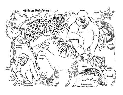 habitats   world activity