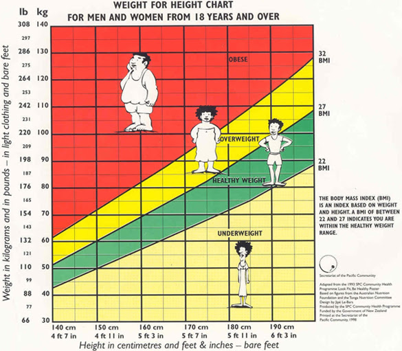 body fat percentage for males in the army