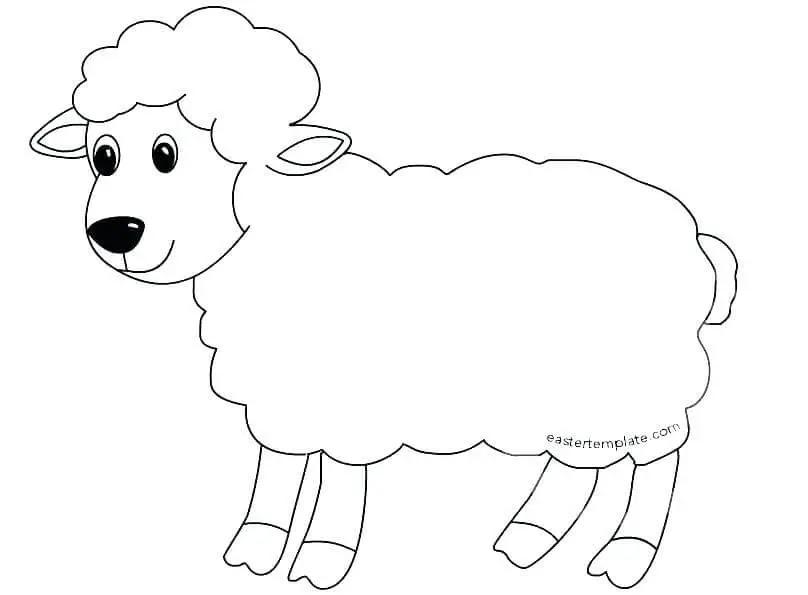 gambar animasi hewan yang gampang  gambar hewan