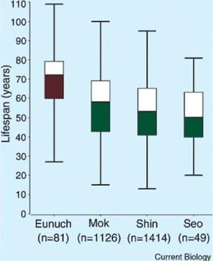 Eunucos vivem mais, diz estudo (Foto: Current Biology)