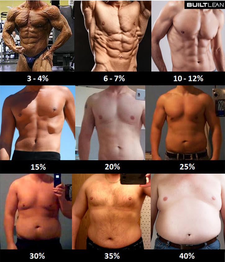 body fat percentage chart in mm