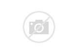 Methane Gas As An Alternative Fuel