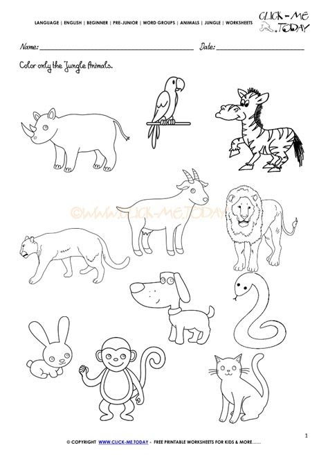 forest animals worksheets  coloring pages