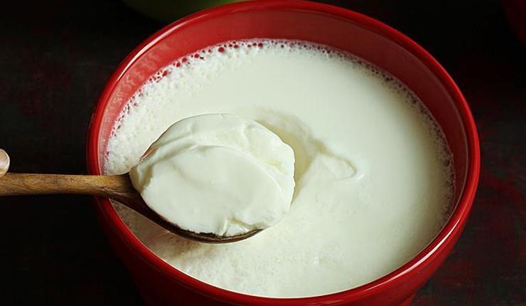 घर पर दही कैसे बनायें और जल्दी से फ्रीज करें! तो बाहर के दही से छुटकारा पाएं और घर पर स्वादिष्ट दही बनाएं