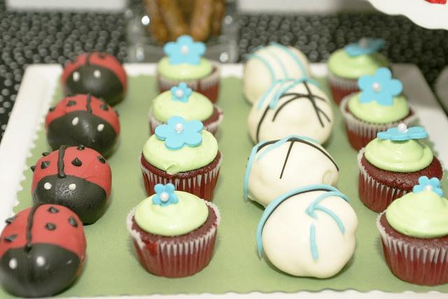 ladybugscupcakes2588