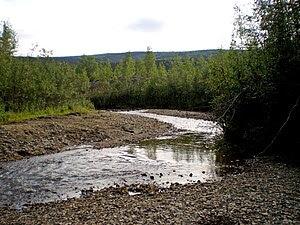 Discovery Claim on Bonanza Creek, Yukon Territ...