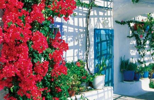 3-garden-courtyard | Home Interior Design, Kitchen and Bathroom ...