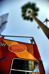 Los Angeles Tour Bus