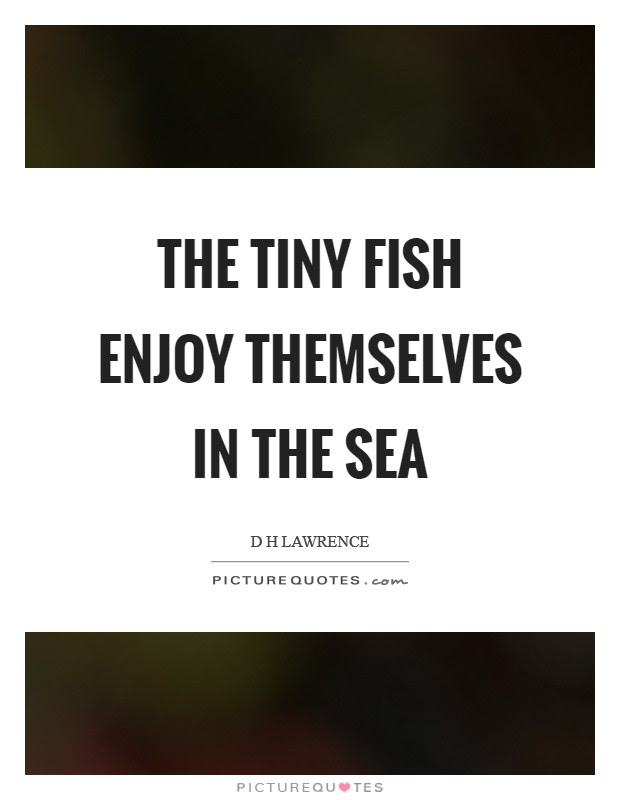 Funny Fish In The Sea Quotes Nobody Should Have To Go Through Hell