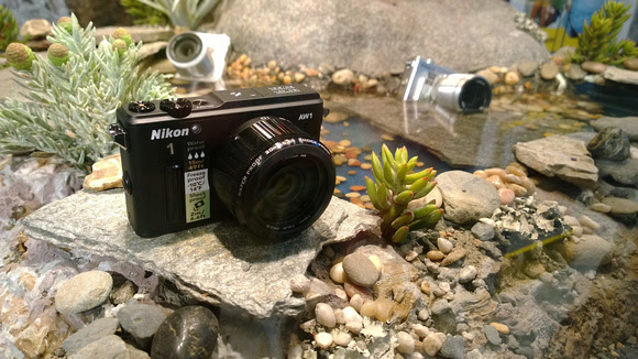 Nikon AW1 proved to be a real underwater camera