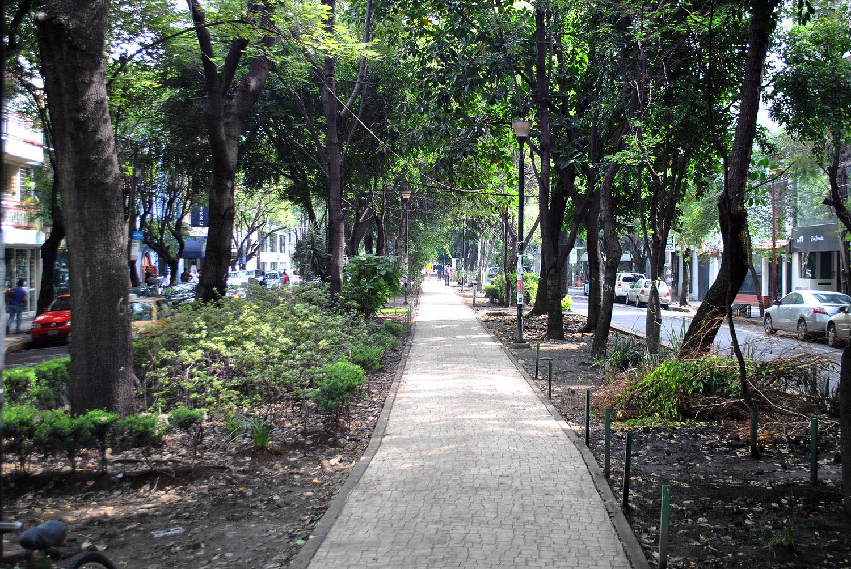 avenida mazatlan condesa