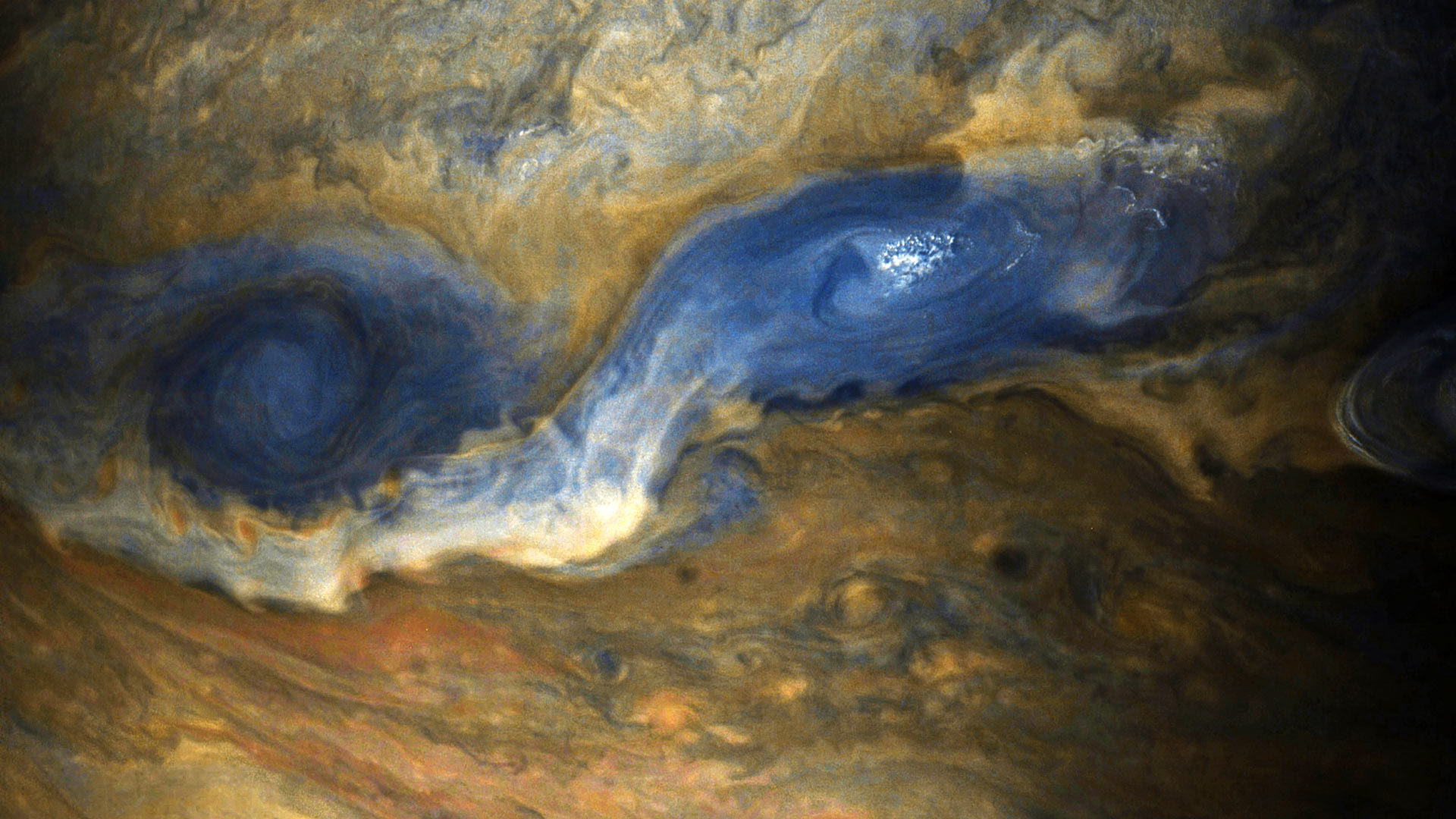 Image result for Jupiter Revealed In Stunning New Images From NASA's Juno Spacecraft