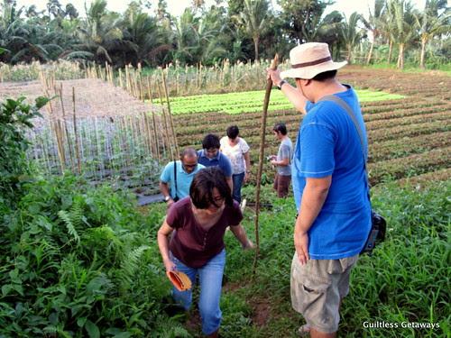 organic-farm-tour-costales-nature-farms.jpg