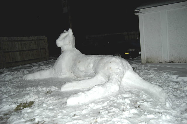Snow Tiger rear