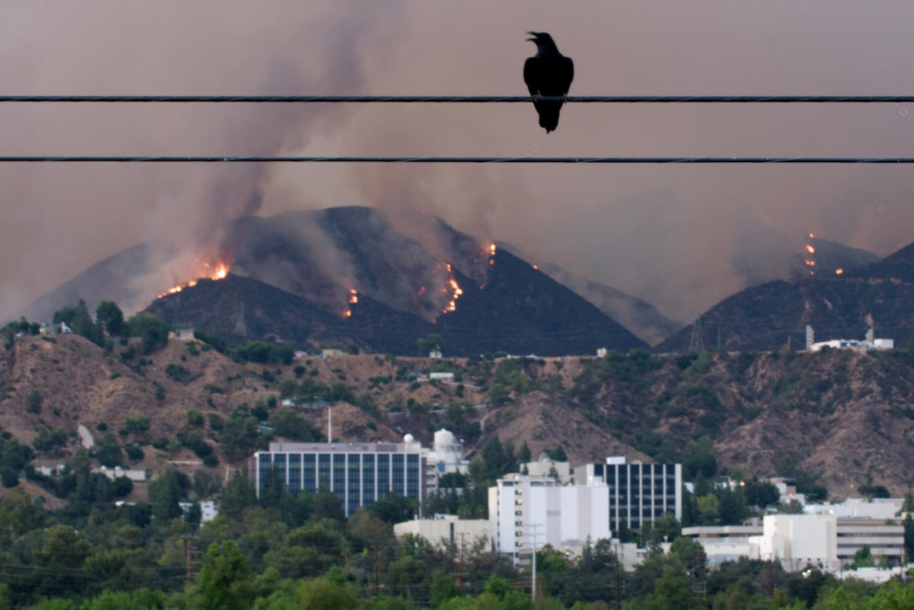 The Station fire, which started on Aug. 26, devoured brush in the foothills above JPL on Fri., Aug. 28