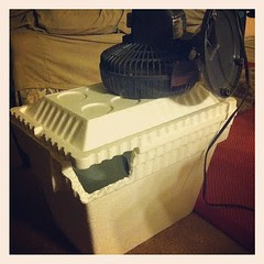 homemade ac courtesy of @codyneinast to keep a pregnant lady cool this summer!
