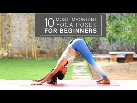 most popular yoga poses for beginners