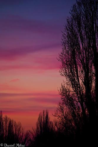 The sky of love