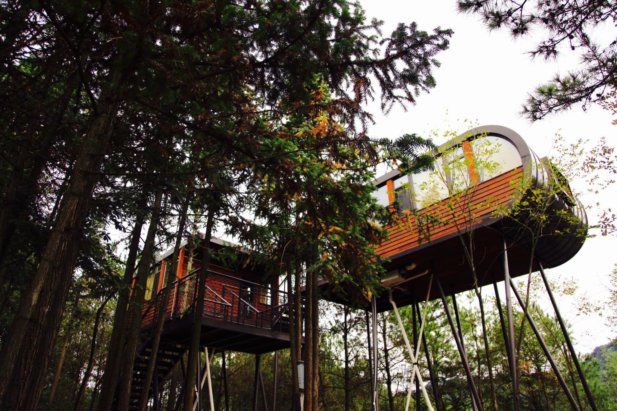 ZYJ Treehouse Land Huangshan Qiyun Reviews