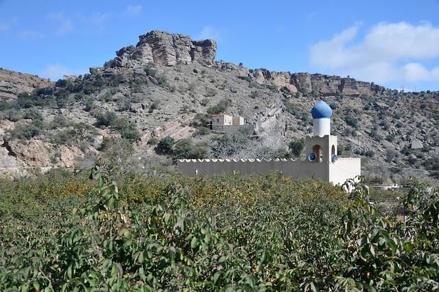 Djebel Akhdar (13)