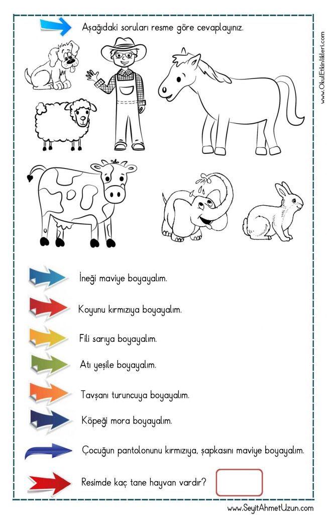Okuduğunu Anlama Oku Boya çalışması 1 Seyit Ahmet Uzun