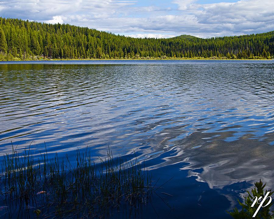 ~ 186/365 Lost Lake ~