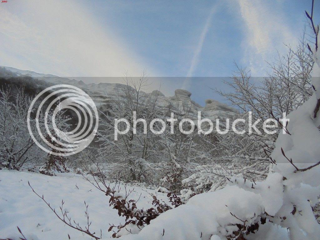 photo SAN DONATO 17-01-16 130_zpstvxezshr.jpg