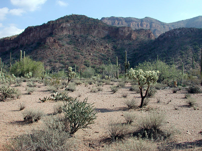 Box Canyon in the Mineral Mountains, Arizona. Photo © by Mike Plagens
