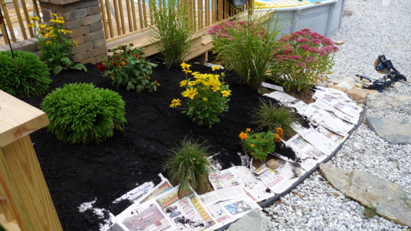 Our Lake Life:A Little Mulch Goes a Long Way - Our Lake Life