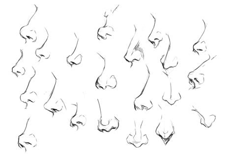 practice noses figures  motivation wushimoo