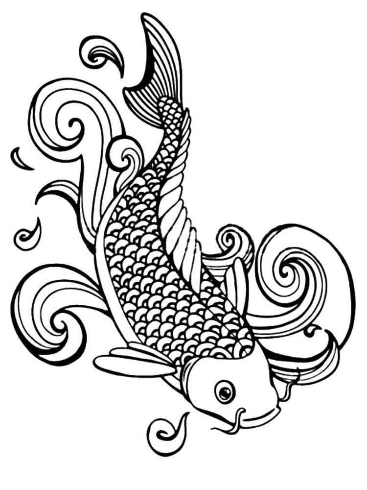 Koi Fish Simple Drawing at GetDrawings   Free download