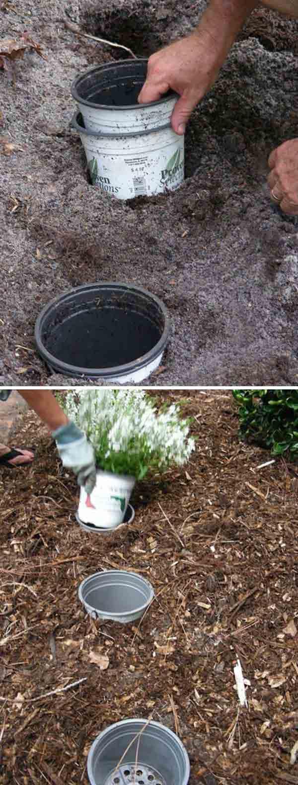 AD-Gardening-Tips-4