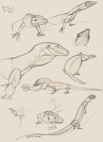 how to draw a monitor lizard