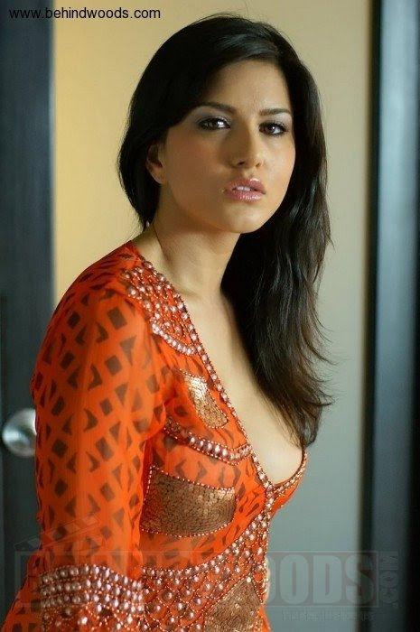 Sunny Leone Hd Wallpapers Photos Hot Download, Sexy-6766
