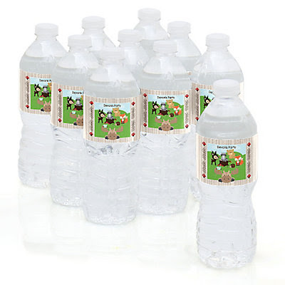 Woodland Creatures - Personalized Party Water Bottle Sticker Labels - Set of 10