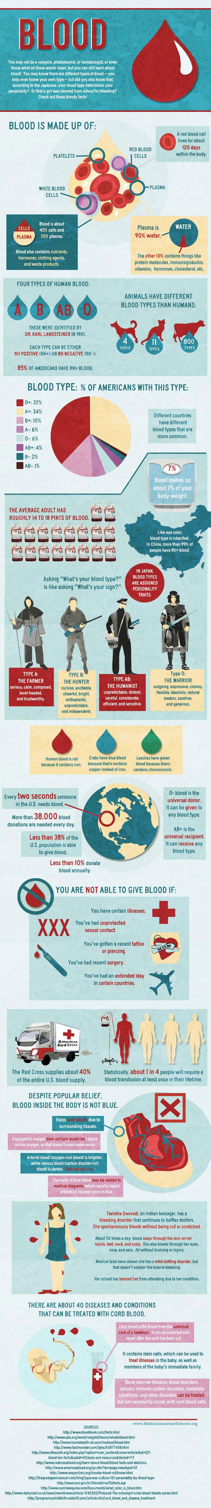 Medical Assistant Schools for Douchebags - infographic made by Douchebags for Douchebags