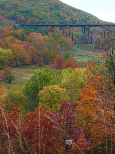 autumn tressle