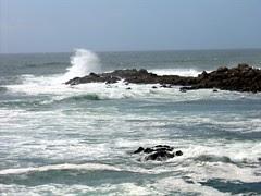 Aquecimento Global e a ameaça aos oceanos e pesca