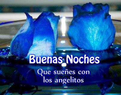 Rosasazulesbuenasnoches Rosasazules Rosasazulesfrasesbuenasnoches I