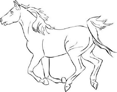 wild horse pages pack coloring pages