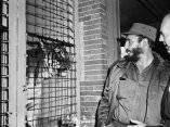 24 de abril. Fidel Castro frente a la jaula del tigre en el Zoologico de Bronx. Foto: Revolución.