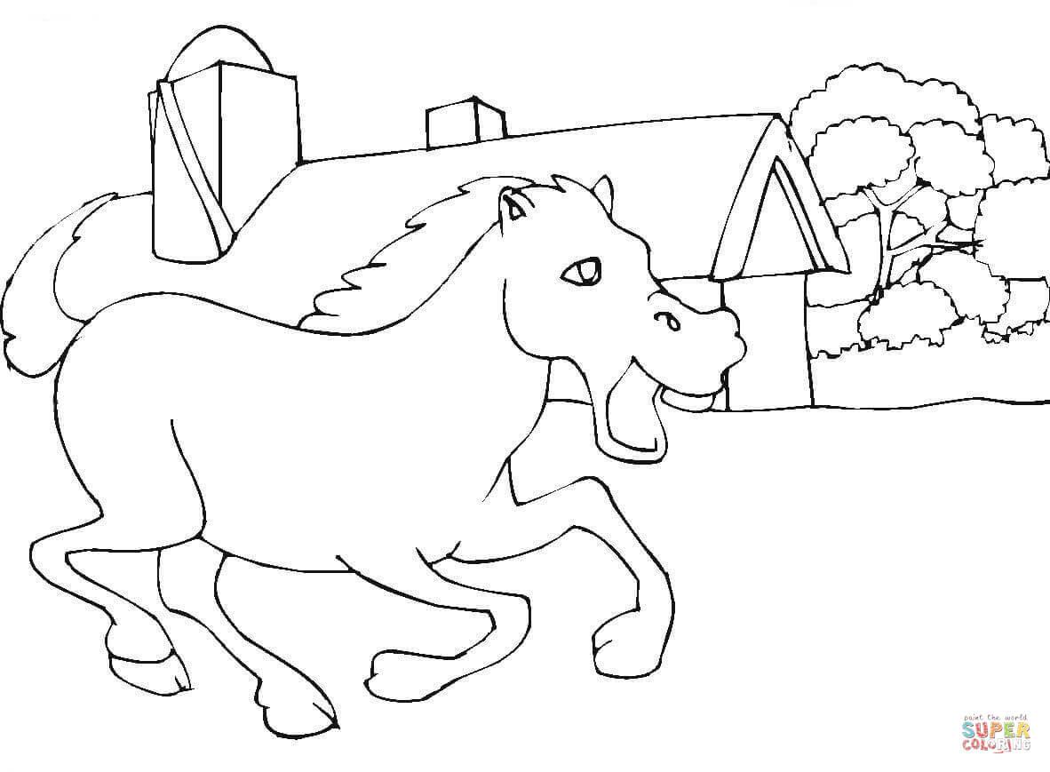 Paarden Kleurplaten Tinker Mooie Kleurplaat Steigerend Paard Krijg Duizenden